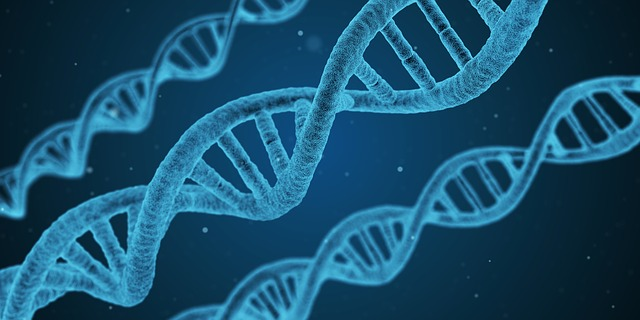 genetics linked to snoring in women